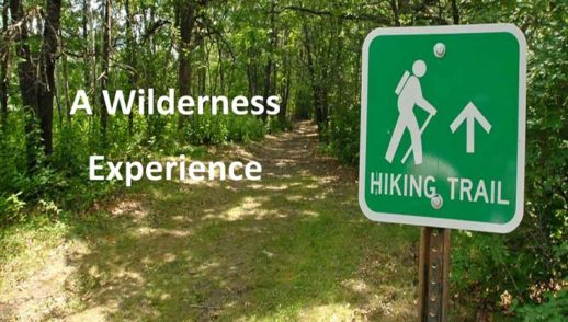 A Wilderness Experience I