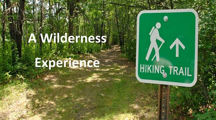 A Wilderness Experience